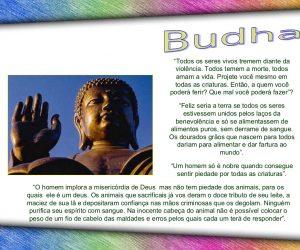 Gênio da humanidade vegetariano: Budha